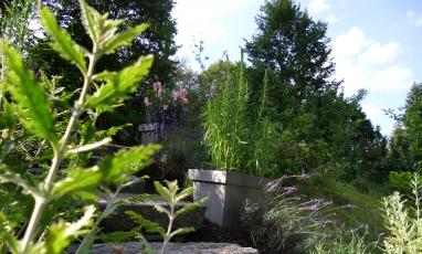 Paradiesgarten Maag3