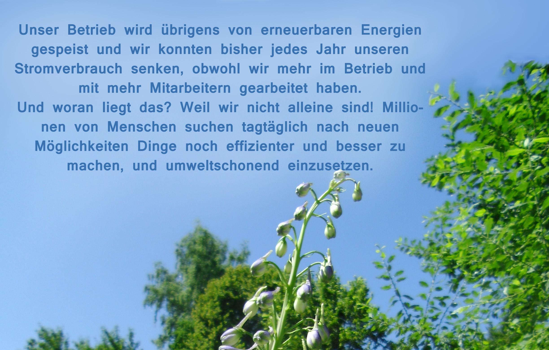 Paradiesgarten Maag