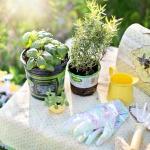 Gartenarbeit genießen