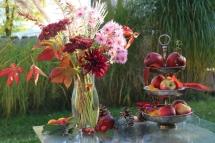 Herbstzauber, Paradiesgarten Maag (4)