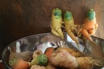 Lustige Karotten, paradiesgarten maag