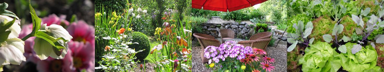 Nachhaltige Seminare, Garten (3)
