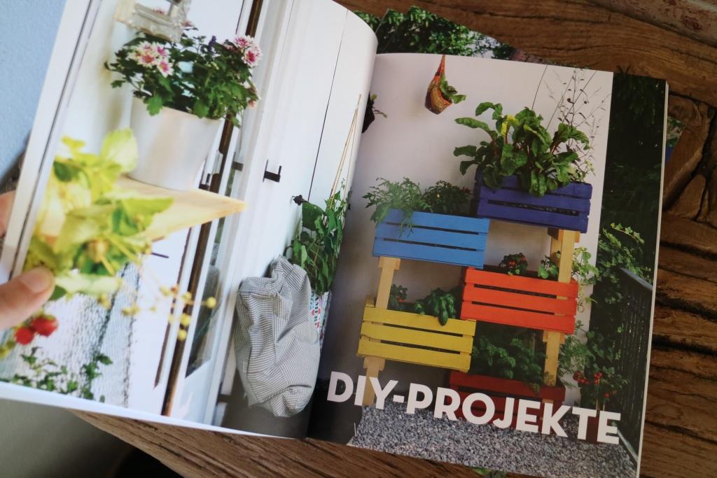 Gemüse vertikal anbauen