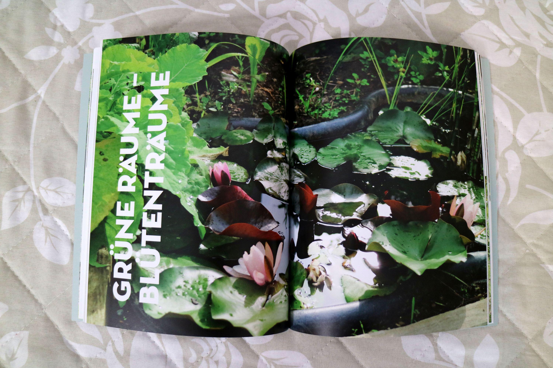Wassergärten, Farne & Pilze, gestalten mit Steinen, bunte Beete rund ums Jahr und Raumteiler