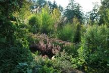 Paradiesgarten Maag (10)