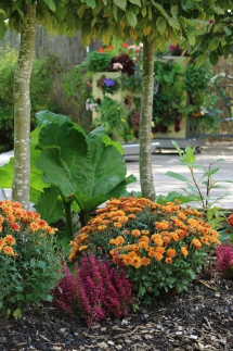 Paradiesgarten Maag (6)