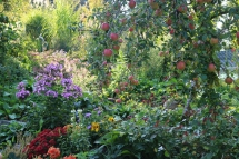 Paradiesgarten Maag (9)